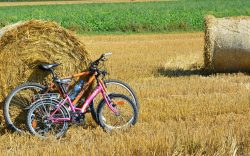 Tarifs et itinéraires – location vélos